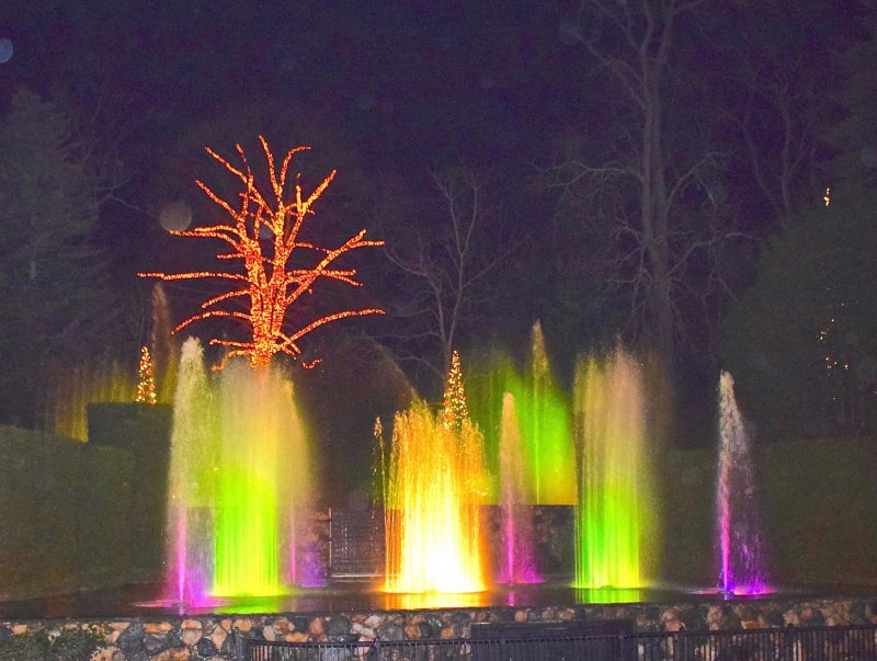 Night Christmas fountain show at Longwood Gardens. Fountain night works done at 1/20th sec exposure.