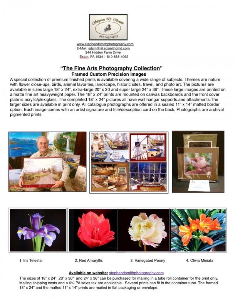 _Fine Arts Collection Catalogue